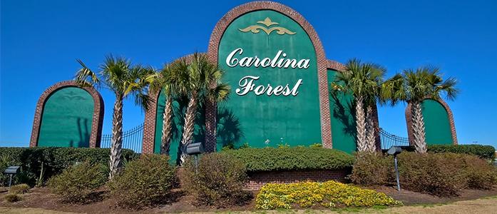 carolina-forest-img